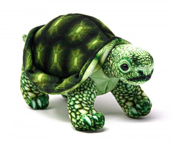 Kuscheltier - Landschildkröte grün - 20 cm